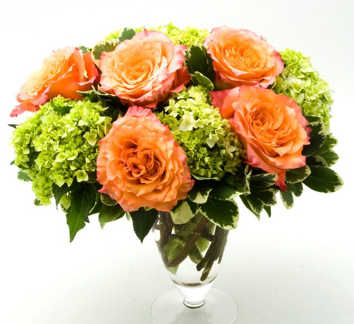 the artworks, yeg flowers, delivery, hydrangea, roses