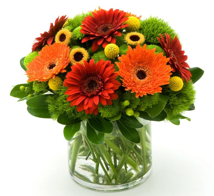 the artworks, yeg flowers, delivery, gerbera