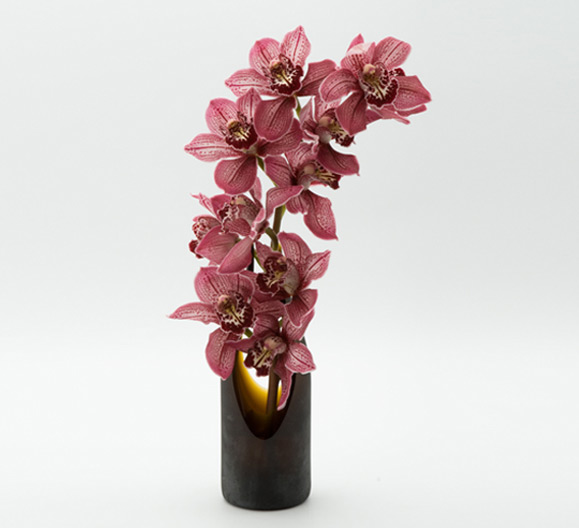 the artworks, yeg flowers, delivery, orchid, TransGlass